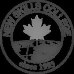 New Skills_Logo